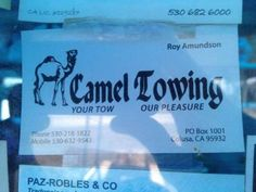 The Logo Possibilities For 'Camel Towing' Are Endless