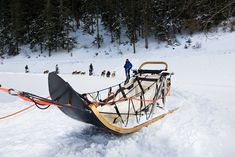 Dog Sleigh, Snow Sled, Luge, Scouting, Woodworking Ideas, Bucky, Cross Country, Bushcraft, Ski