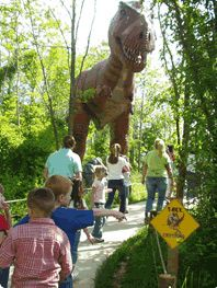 See over 150 life size dinosaurs which are displayed outdoors with explanatory signs.