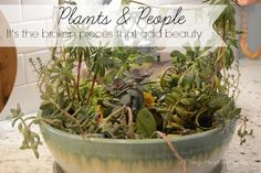 Plants & People...it's the broken pieces that add beauty. - All Things Heart and Home