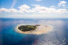Australia Trips-Lady Elliot Island, Queensland