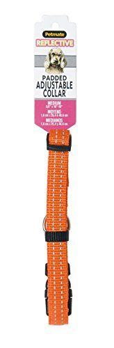 ASPEN PET PRODUCTS 0301954 Nylon Pet Collar 38 by 10 to 16Inch Orange >>> You can get more details by clicking on the image.Note:It is affiliate link to Amazon.