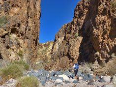 ProTrails | Boulder Canyon Loop, Superstition Wilderness: Canyon Lake Trailhead, Phoenix - Scottsdale - Mesa, Arizona