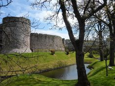Rothesay Castle on the Isle of Bute. In 1230 Vikings hewed the very walls with their axes!