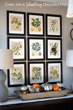 Fill your frames with free botanical prints!