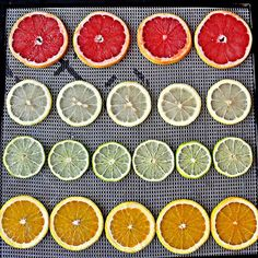 Here's how to use a dehydrator to make and use dehydrated citrus wheels of grapefruit, lemons, limes, and oranges! There are so many uses for dried citrus. Lime Uses, Summer Punch, Orange Wheels, Dried Lemon, Orange Tea, Sweet Potato Chips, Dehydrator Recipes, Dehydrated Food, Freeze Drying