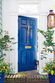 13 Bold Colors for Your Front Door: Charleston China Blue Front Door