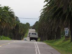 Road to Colonia del Sacramento