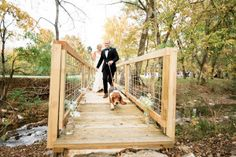 Tennessee Backyard Wedding from Leslee Mitchell Dog Wedding, Wedding Boxes, Wedding Pics, Dream Wedding, Wedding Ideas, Rustic Wedding Venues, Greatest Adventure, The Ranch, Great Photos