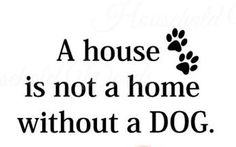 Dog Decal Quote A House Is Not a Home Without a Dog , animal Decal wall art stickers with Paw prints animal lover Decor