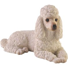 Sandicast Small Size Poodle Sculpture in White