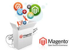 Magento is open source ecommerce software. Magento has gained popularity because of its reliability and flexibility. It has in built features that have functions like management system for catalogues, marketing tools that no other ecommerce development software provides.