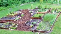 Vegetable raised bed organic garden
