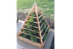 Whether you are an apartment dweller, have a small back yard or just want to maximise your growing space, vertical gardens are both beautiful and practical. Vertical planters are installed vertically, usually on a wall or a fence in your backyard. This allows you to grow more produce in a small area. There are lots of varieties of vegetables and decorative plants that you can grow in vertical planters. Aside from saving garden space, setting up your own vertical garden is inexpensive. You…