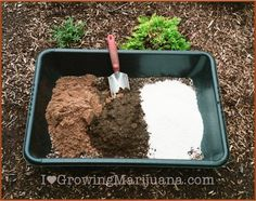 Best outdoor cannabis soil mix