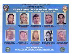 Fotos De Depredadores Sexuale En Puerto Rico Fotos