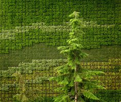 a green mosaic by Harry2010, via Flickr
