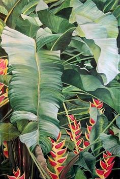 planting Pattern tropical - New Plants Wallpaper Pattern Tropical Prints Ideas Art And Illustration, Motif Tropical, Tropical Prints, Tropical Paintings, Tropical Artwork, Tropical Wallpaper, Tropical Leaves, Figurative Kunst, Hawaiian Art