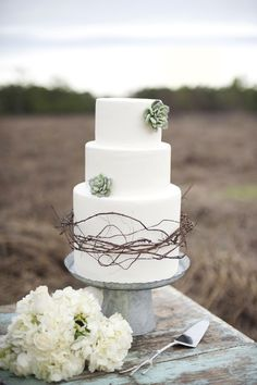 Simple Succulent Cake http://vintagetearoses.com/greyed-jade-wedding-inspiration/ #country #chic