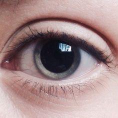Ele ojo