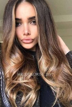Caramel Brown Hair Color picture2