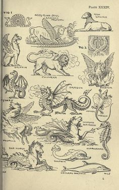 Winged creatures and other mostly mythological animals used in design. Theory and practice of design, and advanced text-book on decorative art. Fantasy Creatures, Mythical Creatures, Tattoo Drawings, Art Drawings, Tattoos, Mythological Animals, Arte Obscura, Esoteric Art, Occult Art
