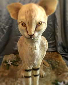 Animal Rights Cake Collaberation - Cake by Claire Potts Sand Cat, Domestic Cat, Edible Art, Animal Rights, Daily Inspiration, Collaboration, Claire, Cake Decorating, Lion Sculpture