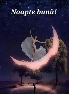 Good Night, Seasons, Movies, Movie Posters, Facebook, Nighty Night, Film Poster, Seasons Of The Year, Films
