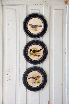 """These bird prints are 10"""" diameter and remind me of my grandmother's house. Very…"""