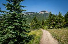 The Nihahi Ridge Hike in Kananaskis Country - Hike Bike Travel Bragg Creek, Alberta Travel, Discover Canada, Outside Activities, Pedestrian Bridge, River Walk, Canadian Rockies, Day Hike, Hiking Trails