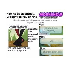 Now here's a little lesson in Animal Jam Adoption  meme credit to @tibcatz_thewisterian #animaljam