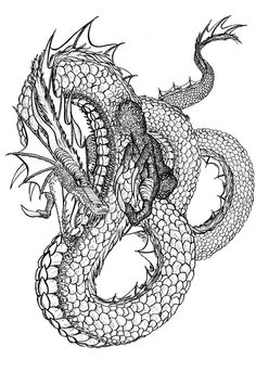 7 Mejores Imágenes De Dragon Butterfly Drawing Dragons Y Draw