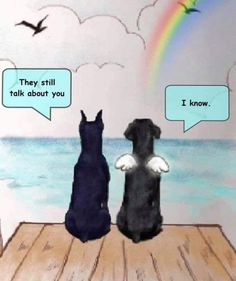 Dog Poems, Dog Quotes, Animal Quotes, I Love Dogs, Puppy Love, Cute Dogs, Animals And Pets, Funny Animals, Cute Animals