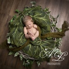 #artbylaw newborn photography