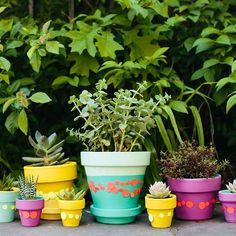 confetti-wrapped pots