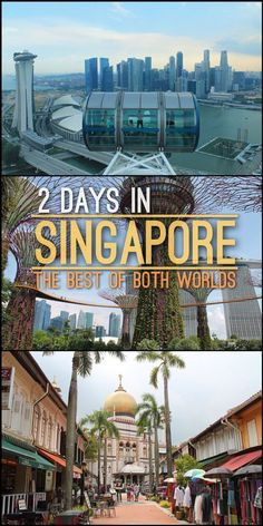 """Planning to spend 2 days in Singapore? There is so much to see, including beaches, historical districts, futuristic """"Supertrees"""" and world class zoos. This Singapore itinerary will show you the best of both worlds, including popular tourist sights and loc"""