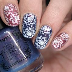 Nail Polish Society>> UberChic Beauty Collection 15 Stamping Plate Review