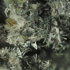 Schauertite, Ca3Ge++++(SO4)2(OH)6•3(H2O),  Tsumeb Mine, Otavi Highlands, Namibia. Colourless Schaurteite on germanite matrix