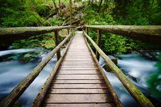 Bridge Golling Waterfalls Austria by HillyPix #ErnstStrasser #Austria #Österreich