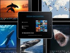 Apps for studying Marine Biology