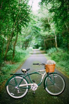Cycle away somewhere far. far, far away. Woodland wanderings.