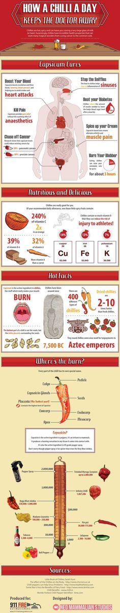 Chilli Infographic