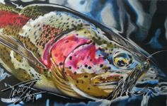 """""""Invader"""" Colored pencil drawing of a Rainbow Trout by Travis J.Sylvester.  Reference photo courtesy of """"Bryan Huskey"""""""