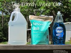 Dog (and chicken) friendly weed killer.  Easy to make with three common household items.