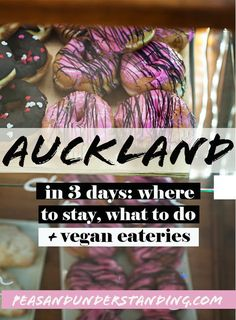 Auckland in 3 days - best place to stay, things to do, vegan places to eat!