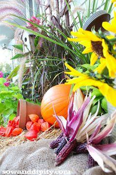 Outdoor fall vignette ideas