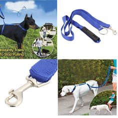 The Instant Trainer Leash (For Dogs over 30 lbs) Instantly trains to stops pulling. The gentle way to train any dog to be a perfect walker. Vet approved. Features: Attaches to any collar (collar NOT i