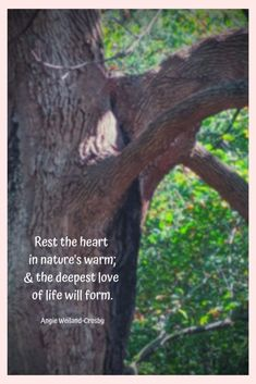 """Inspiring Words for Nature Lovers as Soul Soothers 