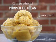 Two ingredient, no-churn pumpkin ice cream (dairy and refined sugar free!) #autoimmunepaleo #autoimmuneprotocol
