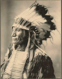 North American Indians   Índios norte-americanos. Brasil, Tribos Nativo  Americanas, Nativo 37c6ff3be0
